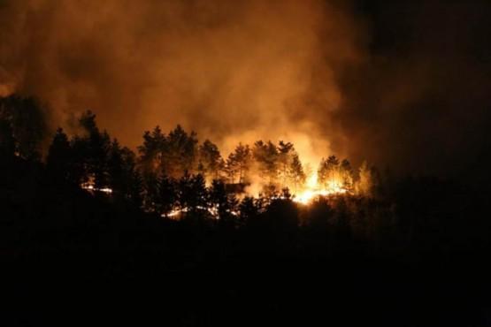 Rize'de ki yangında son durum foto