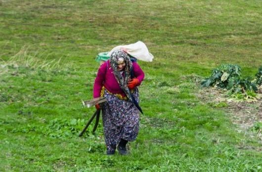 Türkiye İstatistik Kurumu (TÜİK) verilerine göre, Karadeniz Bölgesi'nin kırsal kesimlerinde yaşayan kadınlar, genç yaşlardan itibaren aile bütçelerine katkıda bulunmak için çalışıyor.