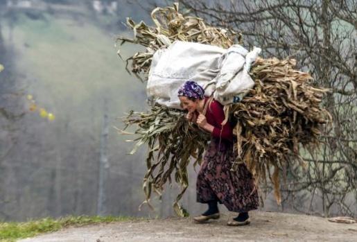 KARADENİZ'de çalışkanlıkları ile bilinen yöre kadınlarının yaz-kış tarla, bağ ve bahçe işlerinde çalışma azimleri örnek oluyor.