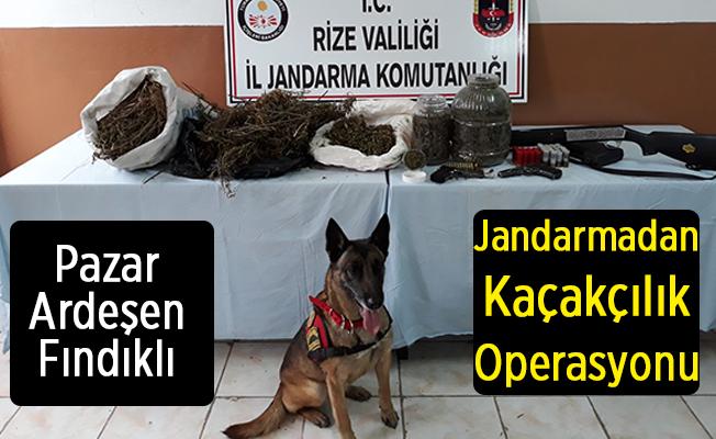 Pazar, Ardeşen ve Fındıklı'da Jandarmadan Kaçakçılık Operasyonu