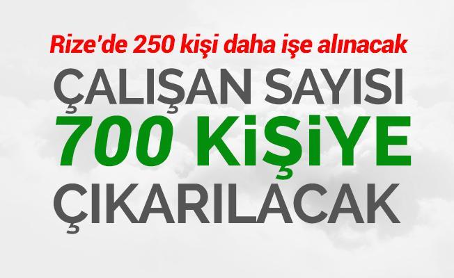 RİZE'de 250 Kişiye iş imkanı