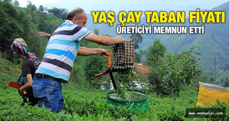 Yaş Çay Taban Fiyatı Üreticiyi Memnun Etti