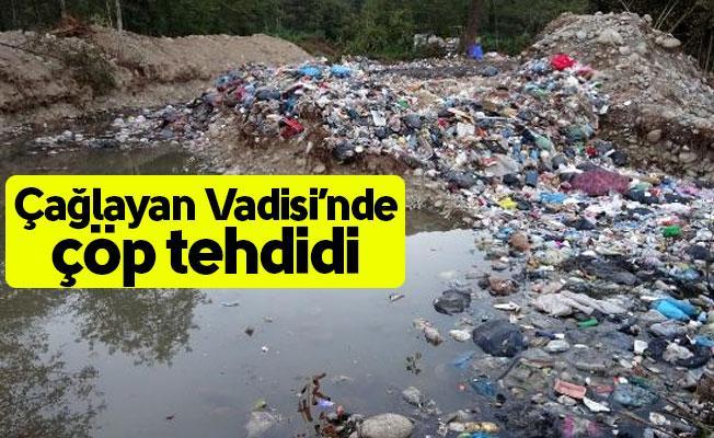 Fındıklı Çağlayan Vadisi'nde çöp tehdidi